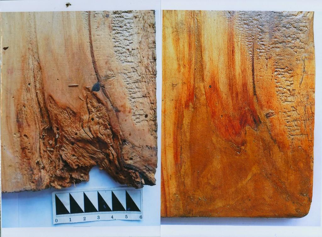 3 Восполнение утрат основы (древесины), фрагмент